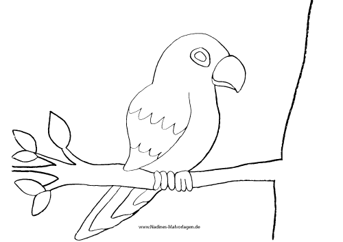 Ausmalbild Papagei auf Ast