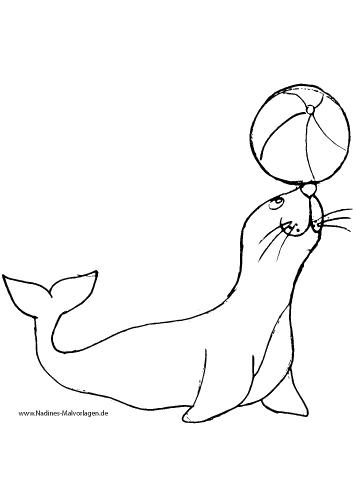 Ausmalbild Robbe spielt mit Ball