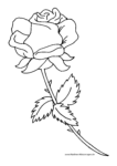 Ausmalbild Rote Rose