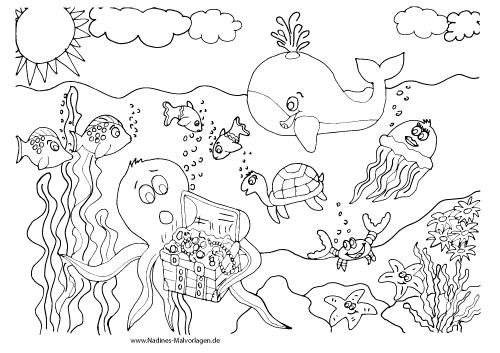 Ausmalbilder Meeresbewohner - Nadines Ausmalbilder