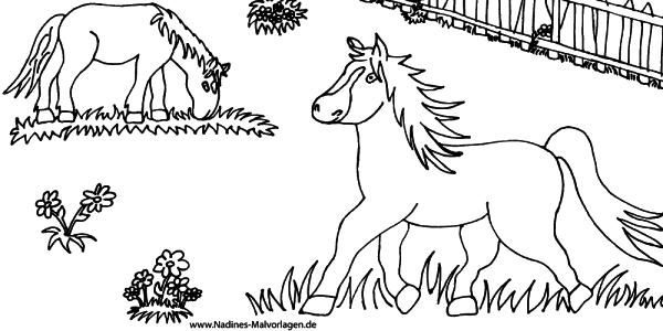 pferdeaufkoppel  nadines ausmalbilder