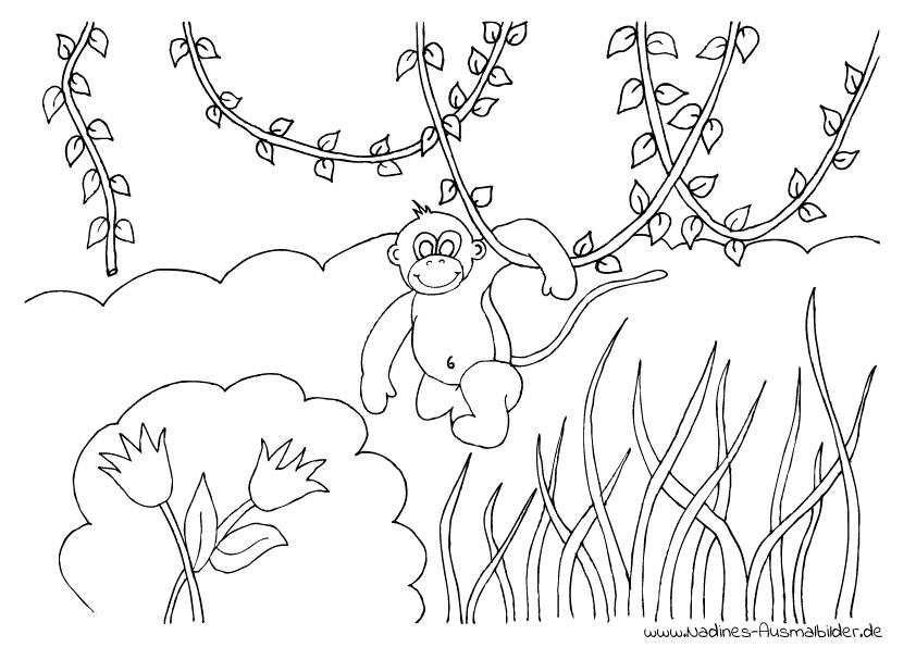 Affe Im Dschungel - Nadines Ausmalbilder