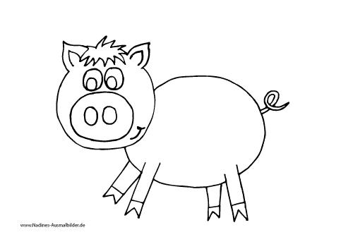 Ausmalbild rosa Schwein mit riesen Nase und Ringelschwanz