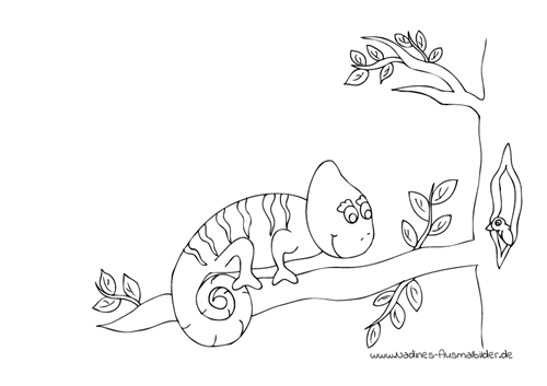 Ausmalbild Chameleon auf Ast in Baum mit Vogel