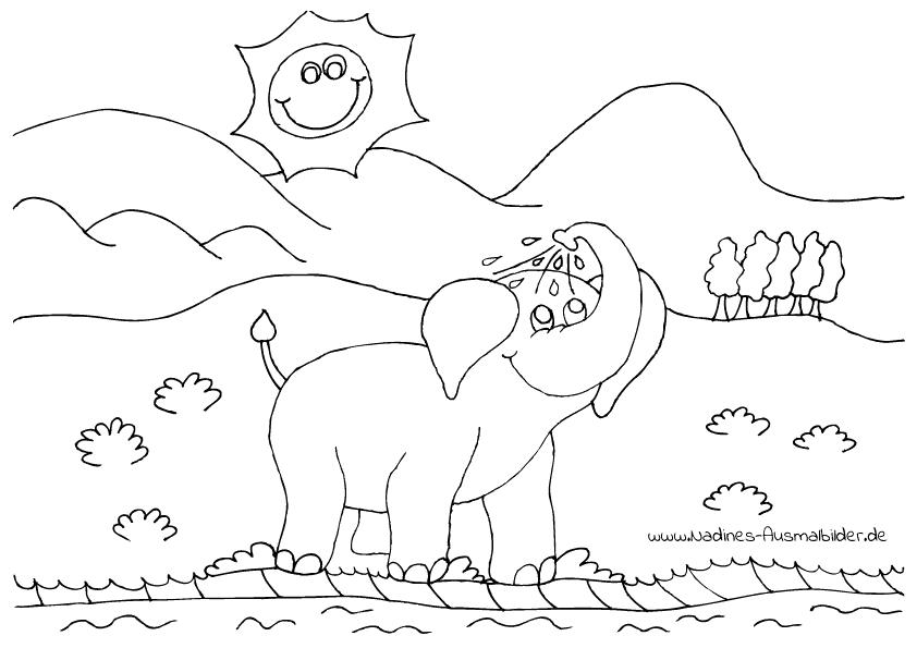 Ausmalbilder Wilde Tiere - Nadines Ausmalbilder