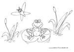 Froehlicher Frosch im Teich mit Libelle