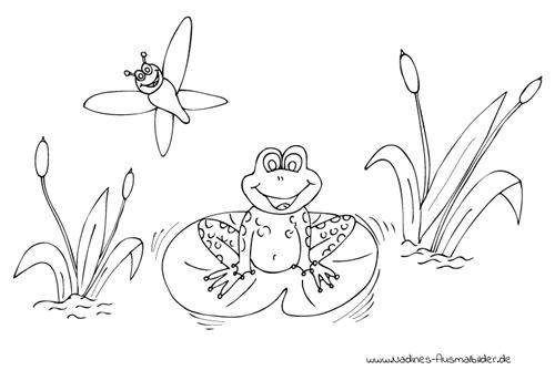 Ausmalbild Fröhlicher Frosch im Teich mit Libelle