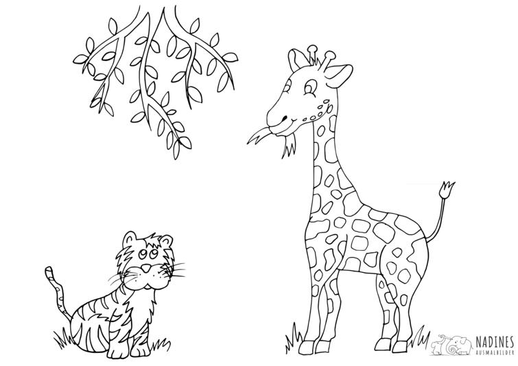 Giraffe Mit Tiger Nadines Ausmalbilder