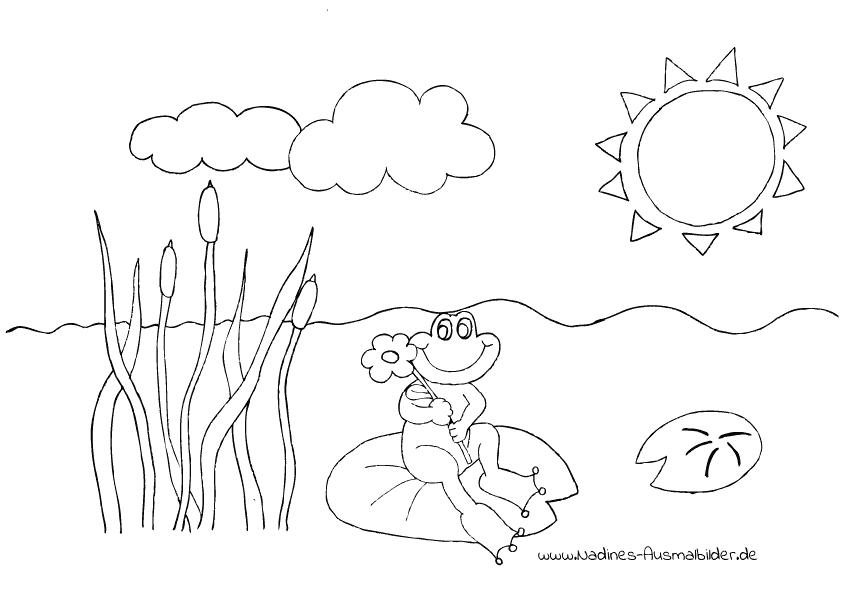 Ausmalbild Glücklicher Frosch im Teich