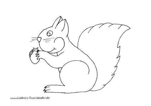 Ausmalbild Lächelndes Eichhörnchen frisst Nuss
