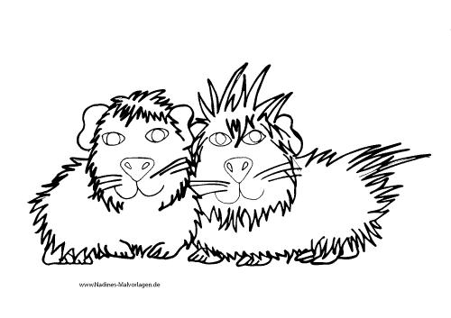kuschelige meerschweinchen schwein eins und schwein zwei