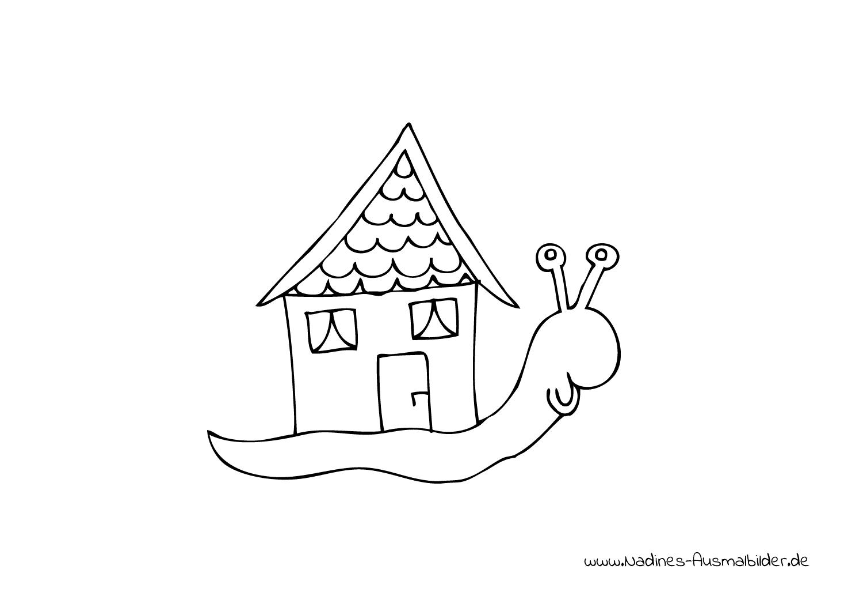 Schnecke mit Schneckenhaus - Nadines Ausmalbilder