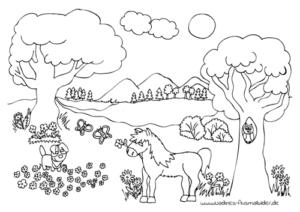 sommerwiese mit pferd - nadines ausmalbilder