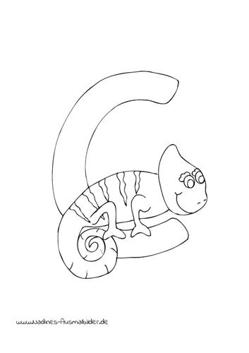 Ausmalbild Tieralphabet Abc Buchstabe C Mit Chameleon