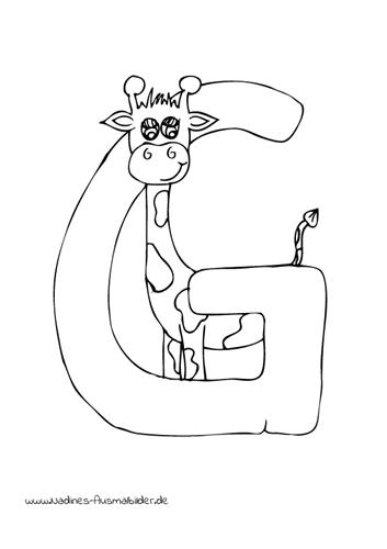 Ausmalbild Tieralphabet ABC Buchstabe G mit vertraeumter Giraffe