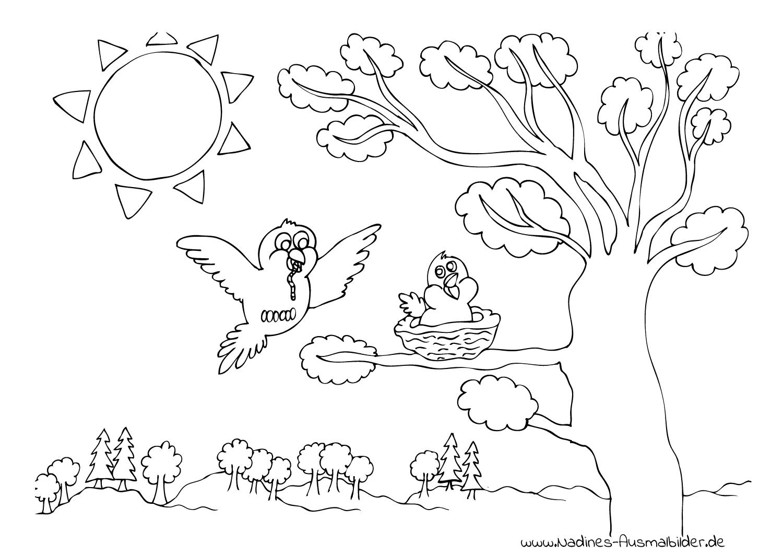 ausmalbild vogel mit wurm und vogelnest im baum