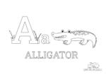Buchstabe A steht für Alligator (Englisch)
