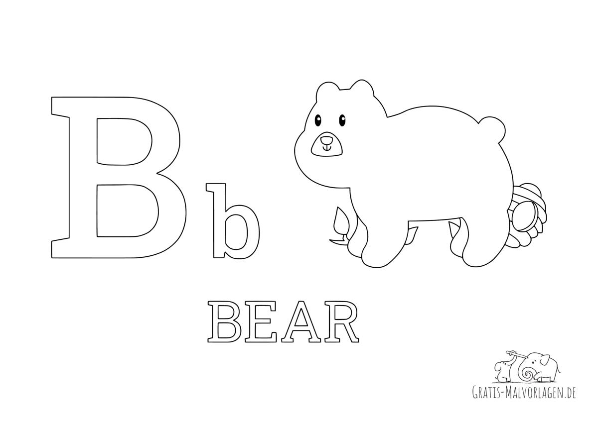 Ausmalbild Buchstabe B steht für Bear (Englisch)