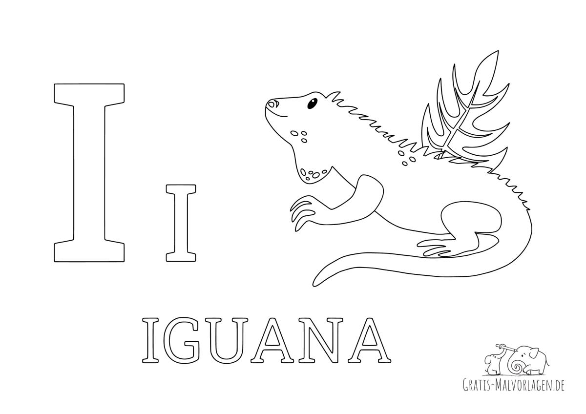 Ausmalbild Buchstabe I steht für Iguana (Englisch)