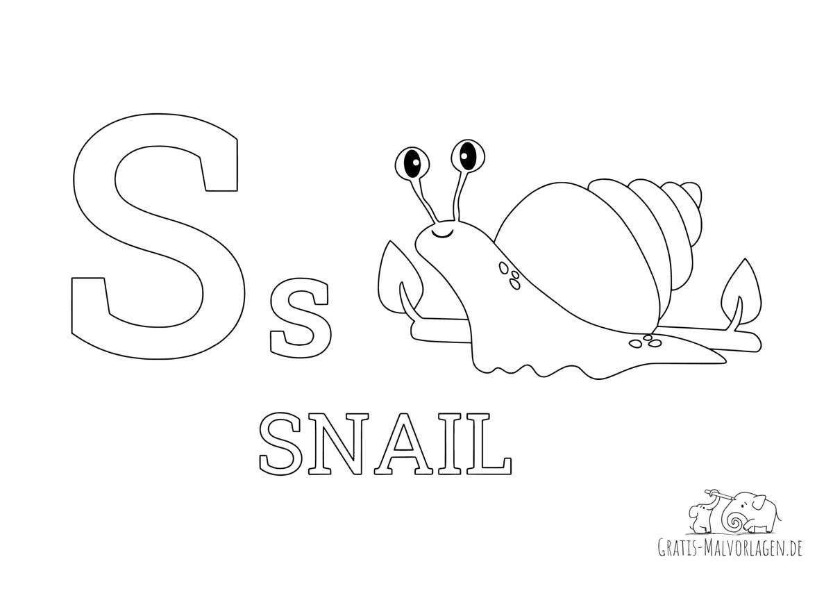 Ausmalbild Buchstabe S steht für Snail (Englisch)
