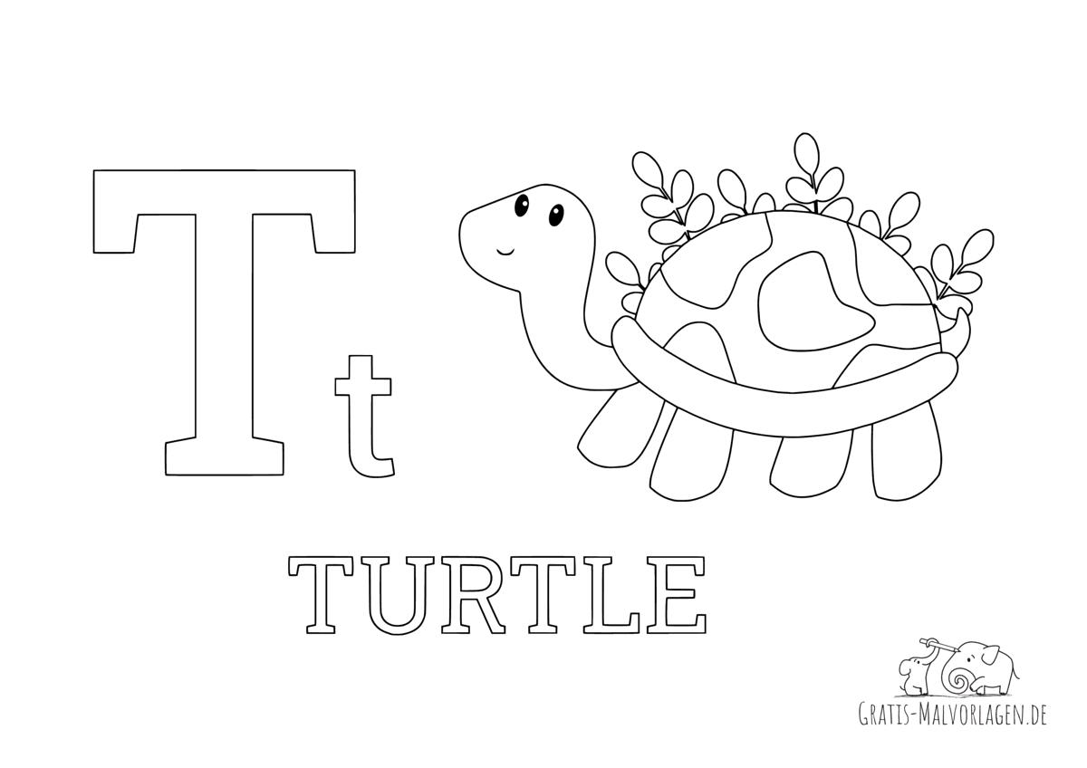 Ausmalbild Buchstabe T steht für Turtle (Englisch)
