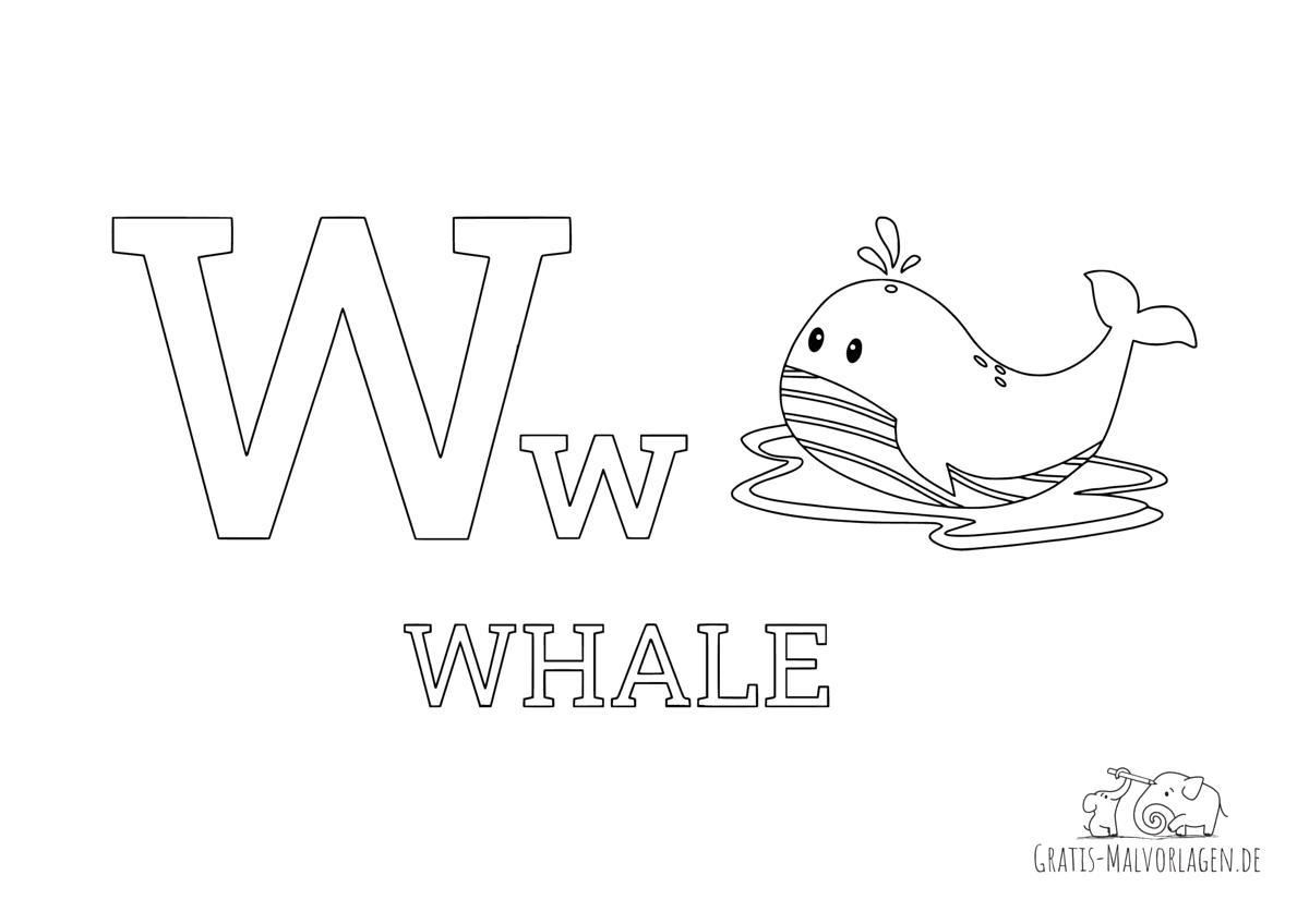 Ausmalbild Buchstabe W steht für Whale (Englisch)