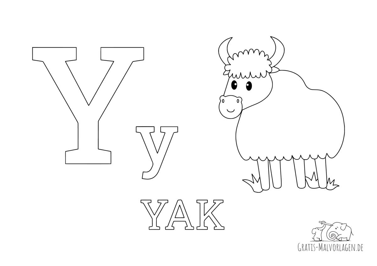 Ausmalbild Buchstabe Y steht für Yak (Englisch)