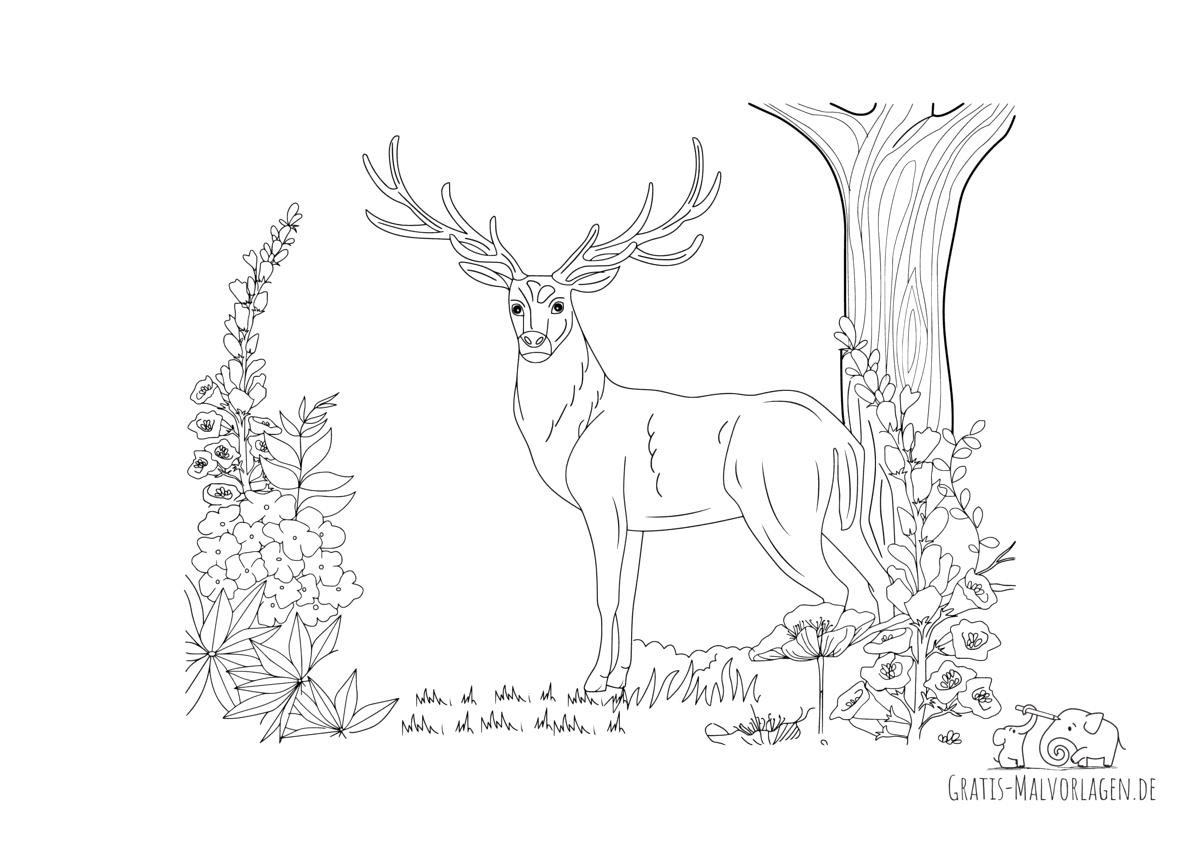 Ausmalbild Hirsch im Wald