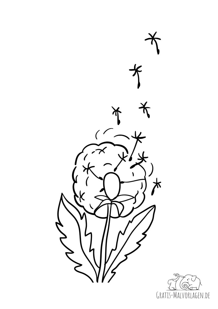 Löwenzahn - Samen fliegen davon