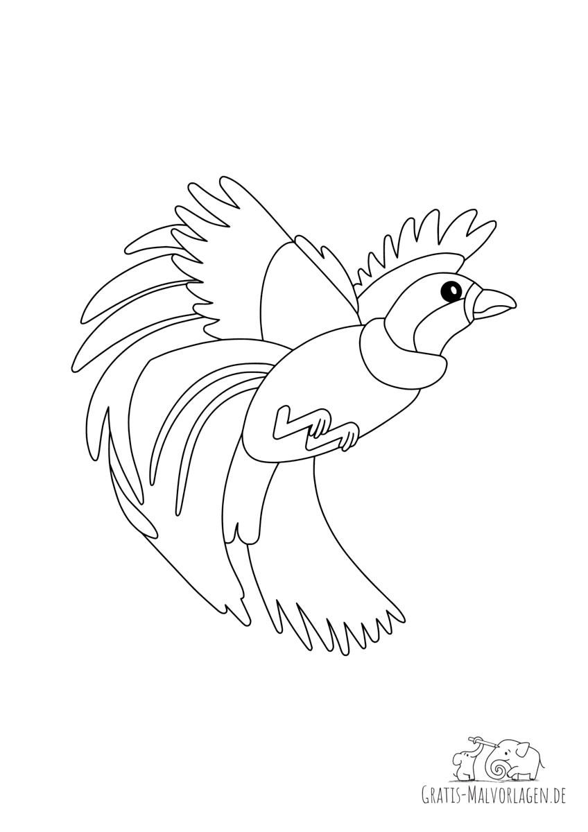 Ausmalbild Paradiesvogel