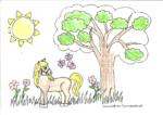 Pferd auf der Wiese - Natascha 7 Jahre