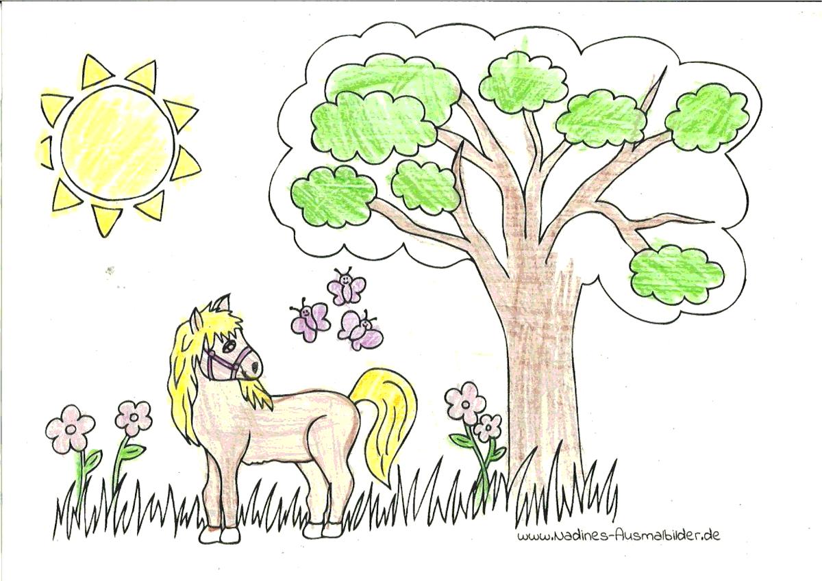 Ausmalbild Pferd auf der Wiese - Natascha 7 Jahre