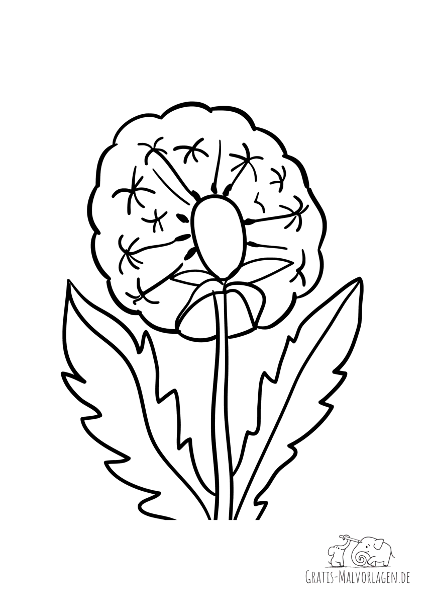 Ausmalbild Pusteblume - Gratis Malvorlagen