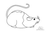 Ausmalbild Ratte mit langem Schwanz