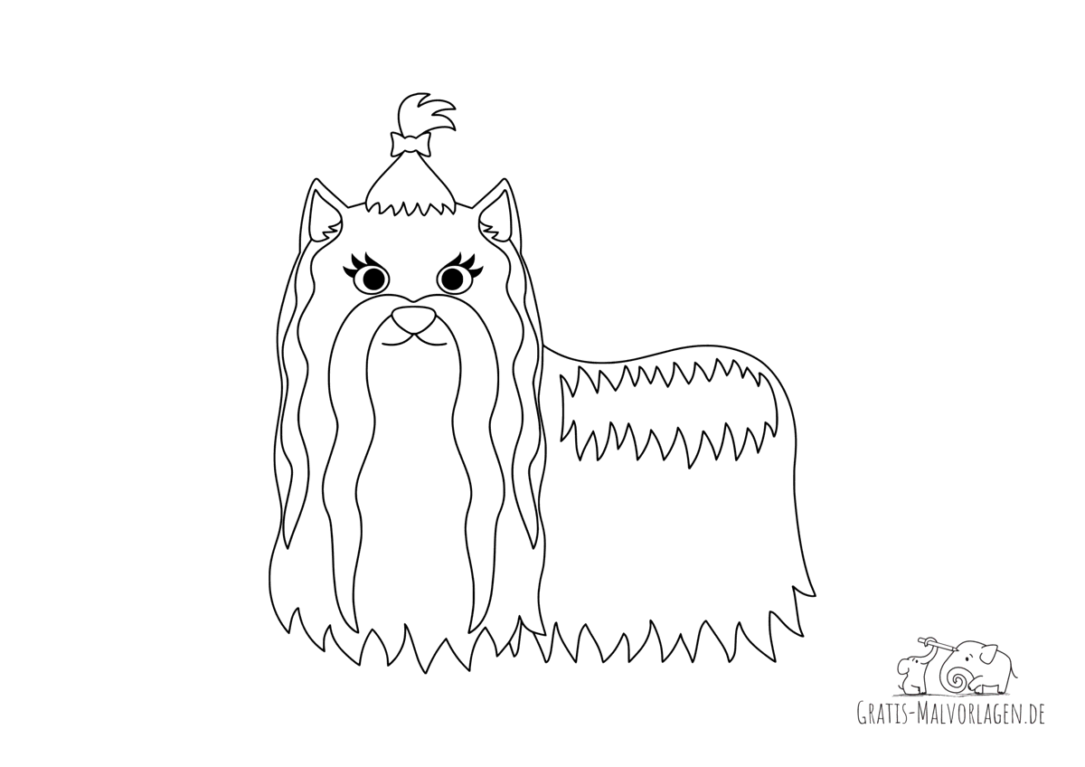 Ausmalbild Yorkshire Terrier